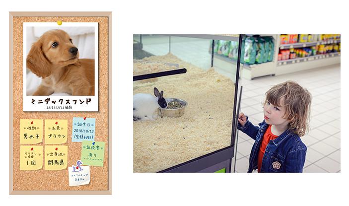 <p><span>【ペットショップで】ペット動画を配信し、ゲージ内で寝ていても普段のペットの姿を表示</span></p>